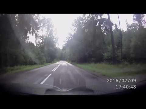 Советск дорога от переезда в санаторский лес
