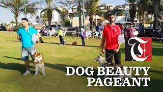 Dog show held at Muscat Hills