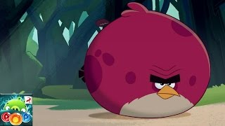 Angry Birds POP! - Bubble Shooter - Rovio Entertainment Ltd Level 14-15