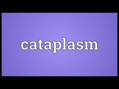 Header of cataplasm