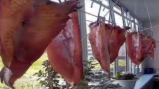 Как вкусно завялить , не вкусную рыбу, Вкусная закуска к пиву из сорной рыбы!