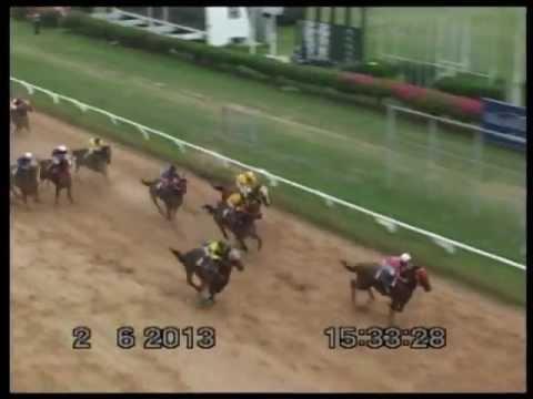 ม้าแข่งสนามโคราช วันอาทิตย์ที่ 2 มิถุนายน 56 เที่ยว6