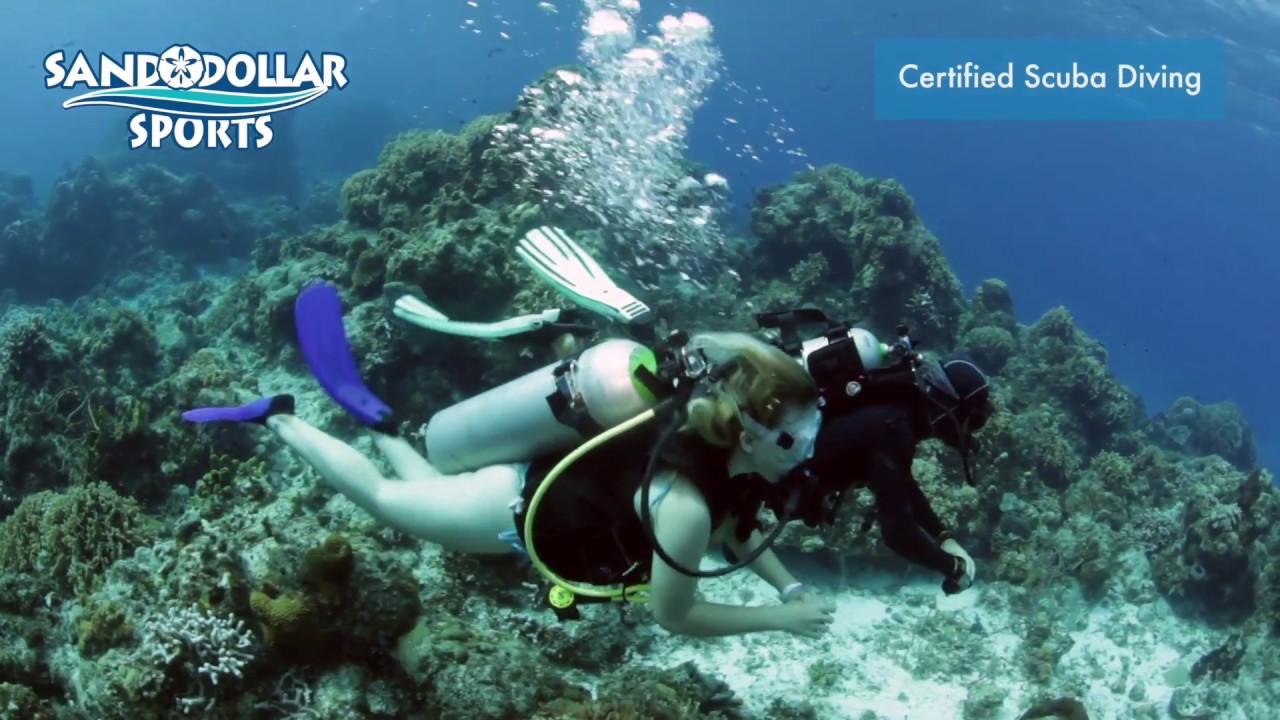Sand Dollar Sports   Best Scuba Diving Cozumel