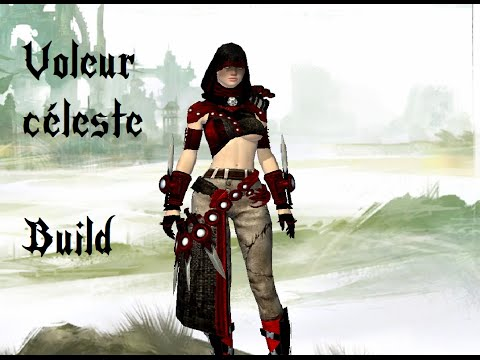 Build Voleur Gw Pve Solo