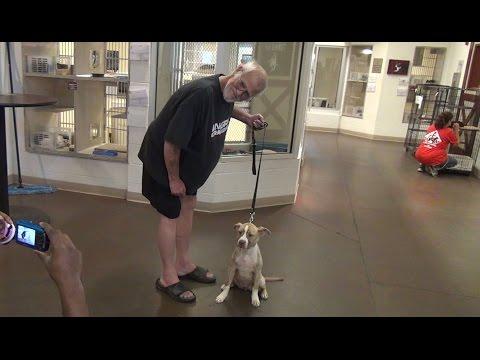 GRANDPA GETS A DOG!
