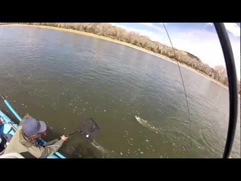 Yellowstone River Streamer Fishing