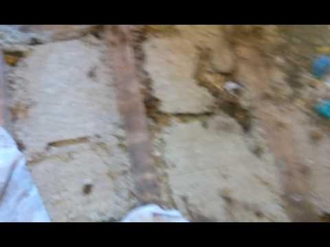 Каменная вата или как крысы в нем себя чувствуют