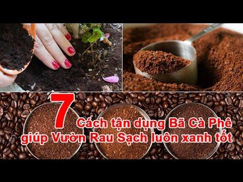 Cực hay: 7 Cách Tận Dụng Bã Cà Phê giúp Vườn Rau Sạch luôn xanh tốt