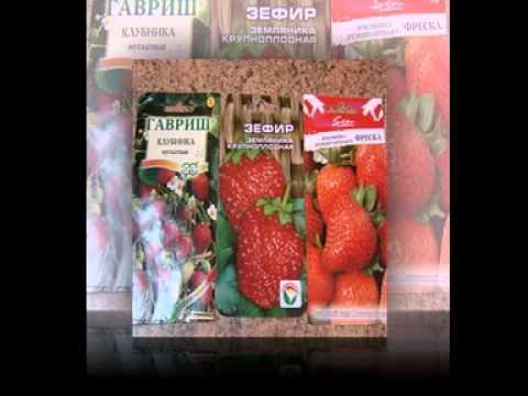 семена овощей фирмы гавриш каталог