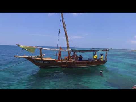 Zanzibar Blue Safari 2016