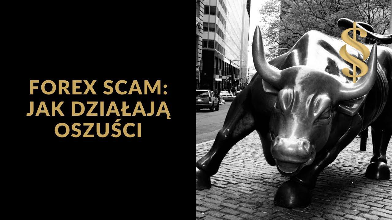 Forex Scam - w jaki sposób działają oszuści podszywający się pod brokerów forexowych?