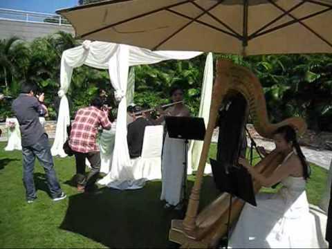 Bridal Chorus & Canon in D - Harp, Flute & Violin Trio