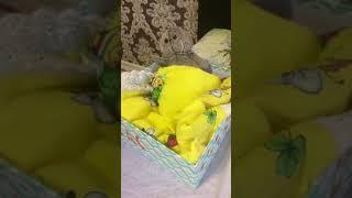 Как сделать Кроватку для Басиков