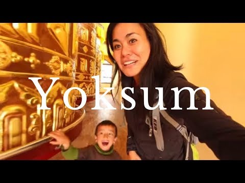 PELLING TO YOKSUM TRAVEL GUIDE | Sikkim India