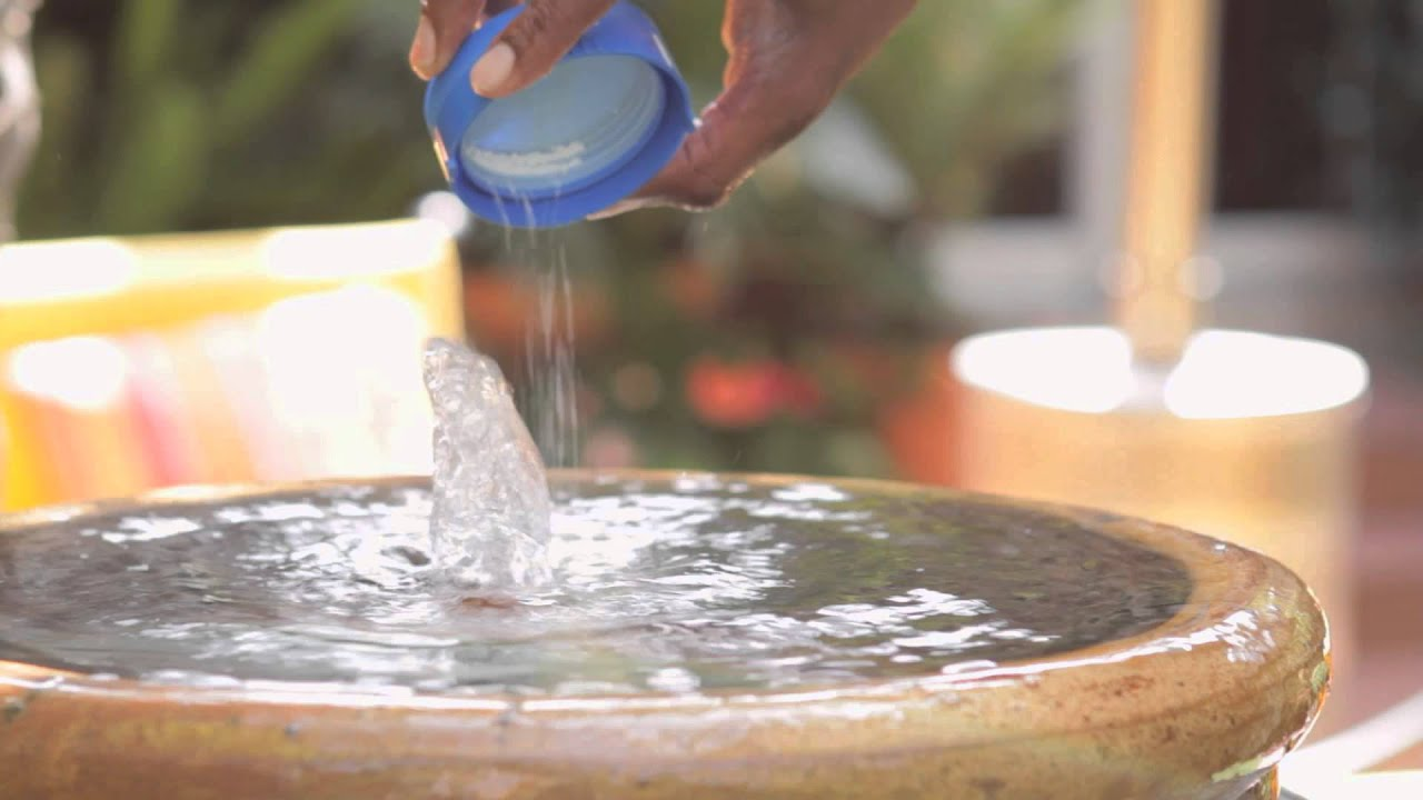 Water And Water Cleaner : How to keep garden fountain water clean landscaping tips