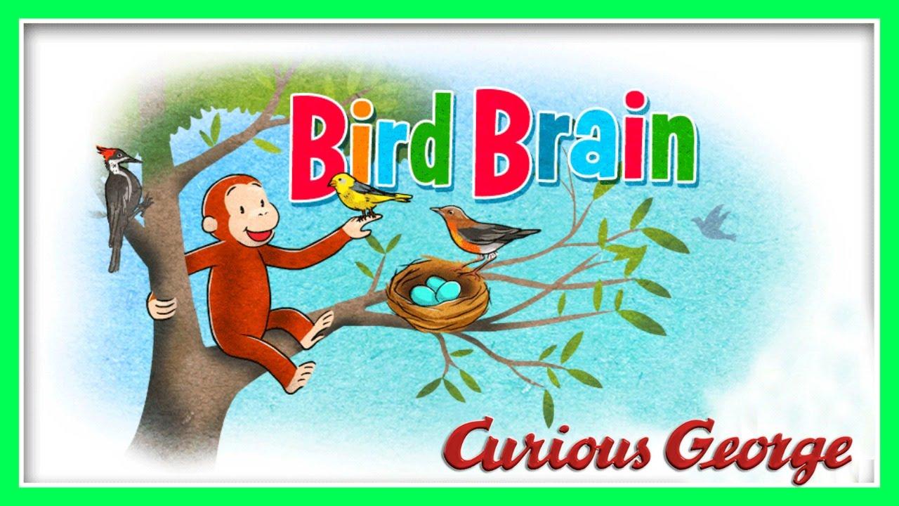 Realm Of Memories Bird Brained: Curious George / Jorge El Curioso