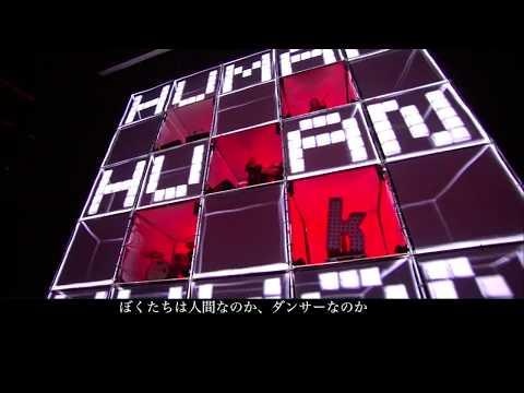 The Killers - Human 和訳