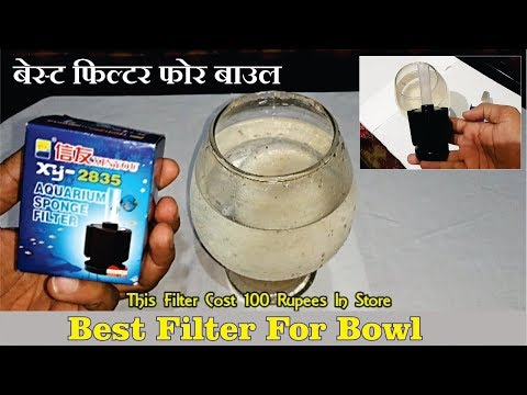 Sponge Filter Unboxing And Review Best Filter For Bowl