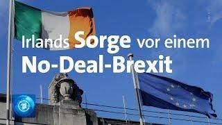 Irland sorgt sich um No-Deal-Brexit
