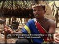 Shaka Zulu Biography Channel