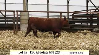 Lot 112 - EEC ABSOLUTE 648 32G
