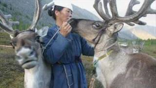 Mongolian Tsaatan tribe [Ulytau - Ata Tolgauy]