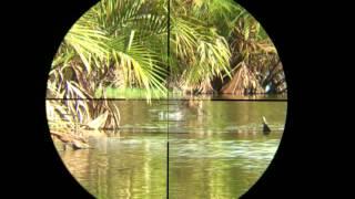 Hunting ( Bebek Bersiul 3 ) air rifle.