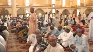 Afrika Camileri Nijerya Tanıtım