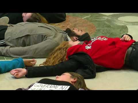 Minn. Students Stage 'Die-In' Over Gun Violence