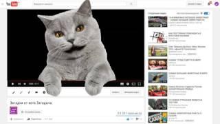 Загадка для детей от кота Загадыча №1