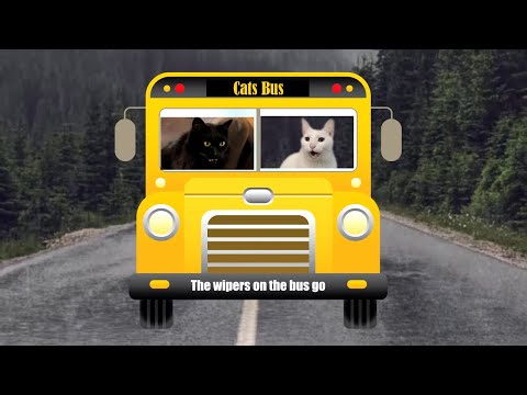 Cats SIng Wheels on the Bus | + More Nursery Rhymes & Kids Songs - Cats Version
