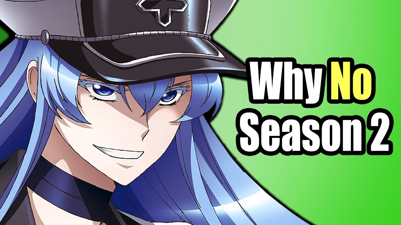 Download Why Akame ga kill isn't getting a season 2