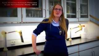 Herlufsholm indefra - Anna Kristina Schnack-Petersen