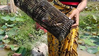 Asian simple girl catches fish by fish trap