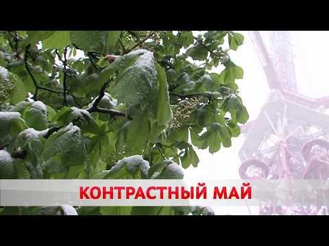 ПОГОДА НА ЗАВТРА - 13 МАЯ