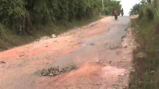 melintas di jalan lintas sumatera dari Palembang ke Jambi