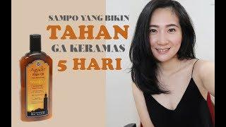 SAMPO TAHAN GA KERAMAS 5 HARI??? - review Agadir Argan Oil daily moisturizing shampoo