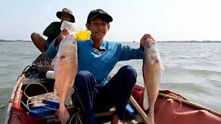 Bậc Thầy giăng Câu Sông Tiền Dính Cặp Cá Sủ Khổng Lồ # SĂN BẮT ĐỒNG THÁP #