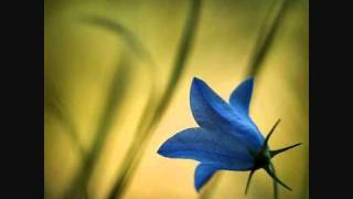 سورة المزمل - يوسف كالو \ Surat Al-Muzammil - Yousef Kalo