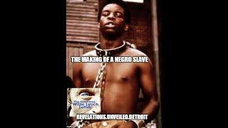 The Willie Lynch Letter Part 2.  Let's Make A SLAVE...