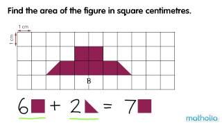 measuring area square centimetres