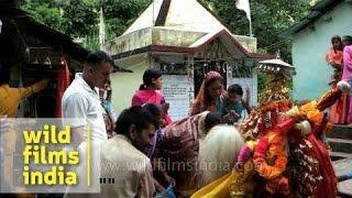 Nanda Devi procession reaches Ghat village in Chamoli - Uttarakhand