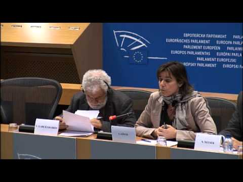 Western Sahara: Morocco blocks European Parliament delegation to occupied territories SPANISH