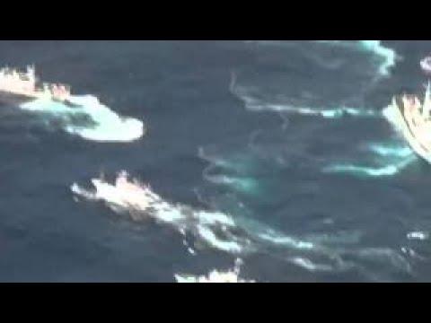 Japan warn Taiwan patrol ship near Diaoyu Islands