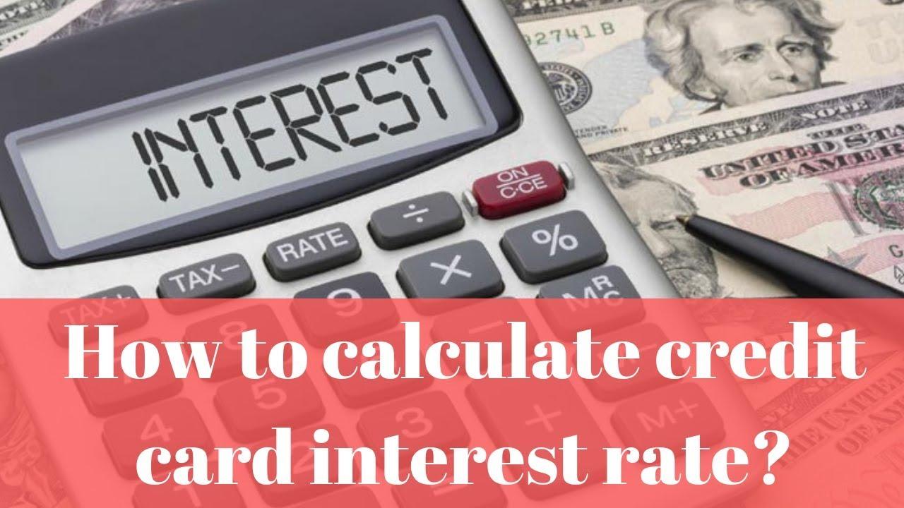 interest rate calculator credit card