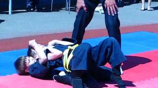 Horting - 武道。ウクライナ国際子供のスポーツ大会。