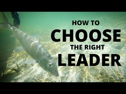CHOOSING The Right LEADER (fly Fishing How To)