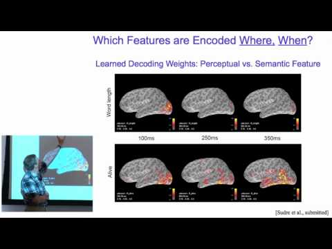 What neural activity encodes about stimuli, where and when
