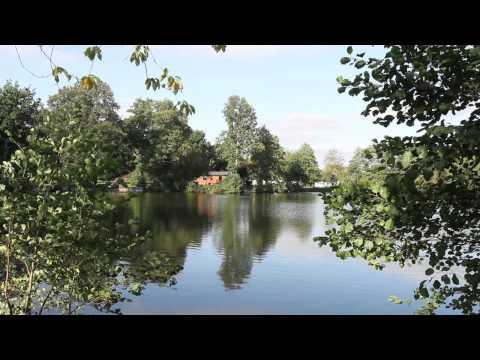 Carp Fishing - Carp And Catfish Holidays Waveney Valley Lakes