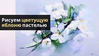 Как нарисовать цветущее дерево пастелью — kalachevaschool.ru — Поэтапный урок с Еленой Таткиной